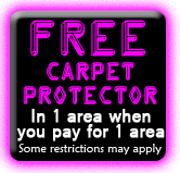 FREE Scotchgard Carpet Protector
