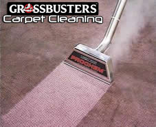 Grossbusters Carpet Cleaning Wand