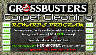 Grossbusters Carpet Cleaning Rewards Program